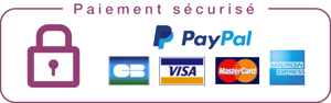 icon securite paiement